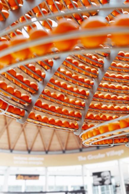 Как портокаловите кори се превръщат в биочаши?