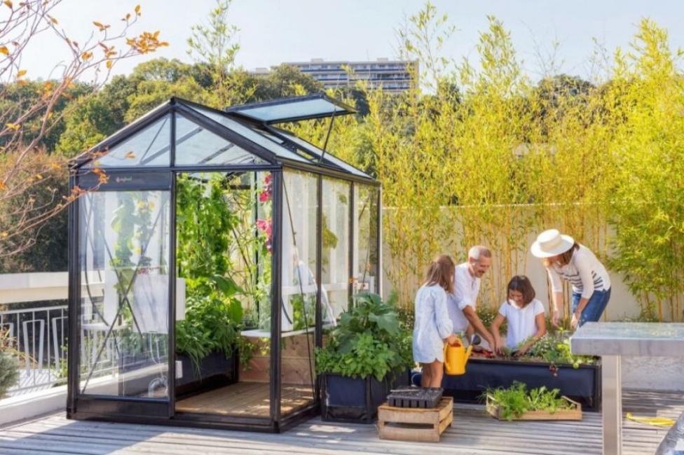 Интелигентна оранжерия в двора или в хола?