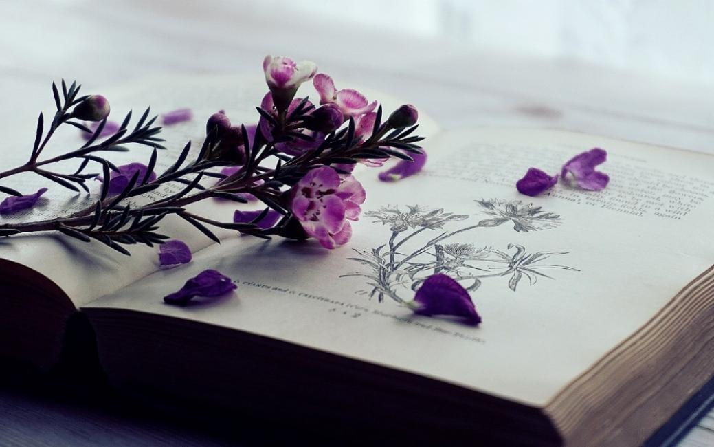 6 книги за силата на живота по време на изпитание