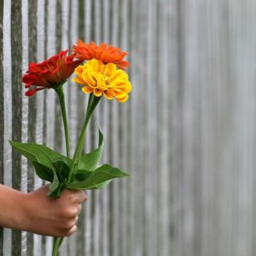 Три начина да си създадем празник за душата