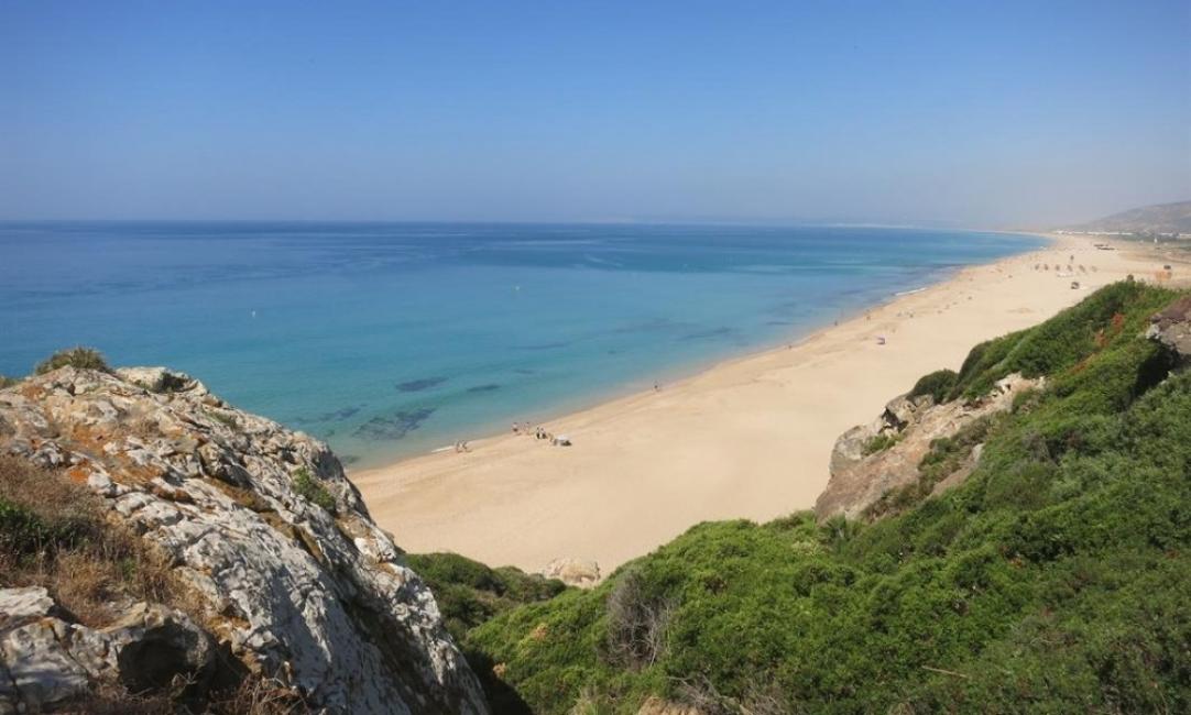 Хората сигурно са полудели: Испания пръска плажовете с белина
