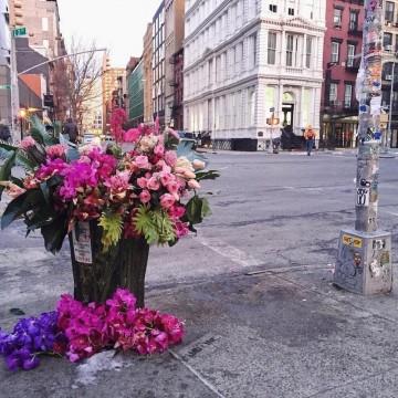 Кошчетата за болкук в Ню Йорк се превърнаха във вази