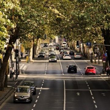 6 града, които станаха по-зелени заради пандемията