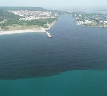 10 месеца унищожаване на Варненското езеро стигат