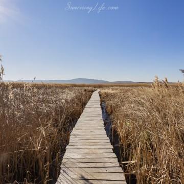 5 места до София за кратка ваканция